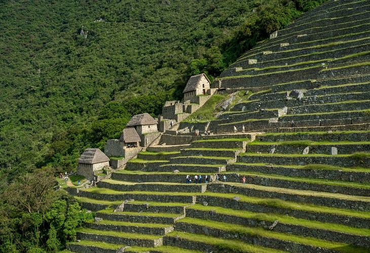 Abgetreppte Terrassen Machu Picchu (Peru)